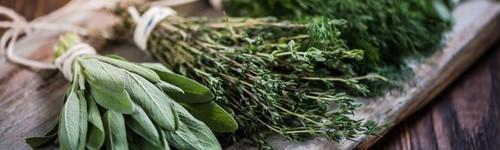 Nos herbes fraïches liquides bio